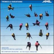 Taking Flight -variations By 19 British Composers: Steen / Bbc So