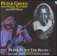 Peter Plays The Blues (Robertjohnson Songbook)