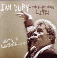 Warts N Audience Plus