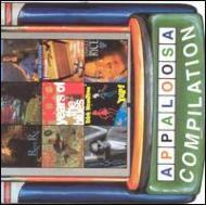Appaloosa Compilation