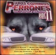 Puros Corridos Perrones Vol.2