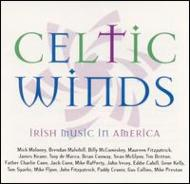 Celtic Winds -Irish Music Inamerica