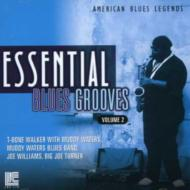 American Blues Legends -Bestof Vol.2