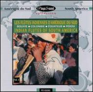 Flutes Indiennes D Amerique Dusud