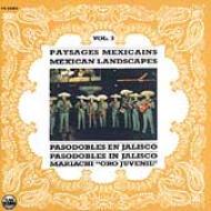 Mexican Landscapes Vol.3