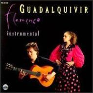 Duo Flamenco Instru