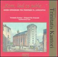 Danis Church Music: Trinitatiskantori