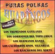 Puras Polkas Y Huapangos