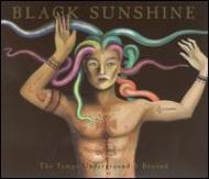 Black Sunshine -Tampa Underground & Beyond