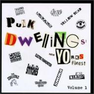 Punk Dwellings New Yorks Finest Vol.1