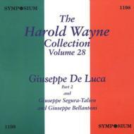 Voo.28: Giuseppe Di Luca Vol.2