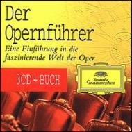 Opera Guide