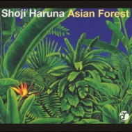 Asian Forest