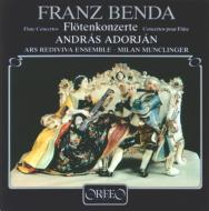 Flute Concertos: Adorjan / Munclinge
