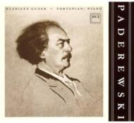 Piano Works: Guzek(P)