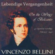 Bellini On The Wings Of Belcanto: V / A