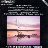 Choral Works: Jarvi / Gothenburg.so, Etc