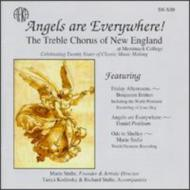 Angels Are Everywhere The Treble Chorus Of New England