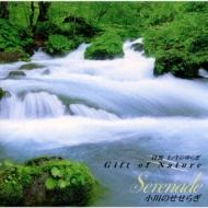 Α波1 / Fのゆらぎ Gift Of Nature 小川のせせらぎ Serenade