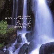 Α波1 / Fのゆらぎ Gift Of Nature 滝のプレリュード Prelude