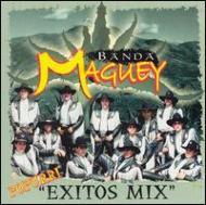 Popurri -Exitos Mix