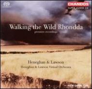 ロンダの荒野を歩く/ヘネガン&ローソン・ヴァーチャルオーケストラ