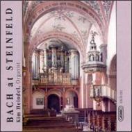 Organ Works: Steinfeld