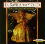 Navidad En Mexico: Christmas In Mexico