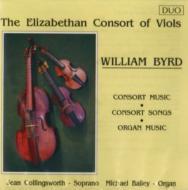 Viole Consort: Elizabeth Consort