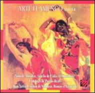 Arte Flamenco Vol.14