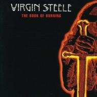 Book Of Burning