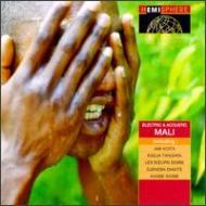 Electric & Acoustic Mali