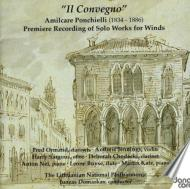 Concertos, Orch.works: Domarkas / Lithuanian National Po