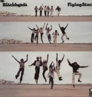 Flying Start (アナログレコード)