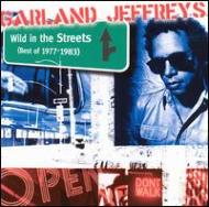 Wild In The Streets -Best Of1977-1983