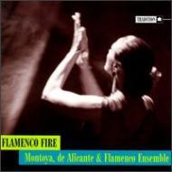 Flamenco File