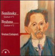 String Quartet.2 / 1: Castagneri.q