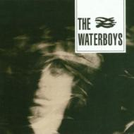 Waterboys (New Version)