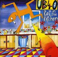 Rat In The Kitchen