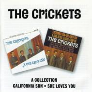 Collection / Califirnia Sun Sheloves You