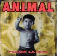 Poder Latino