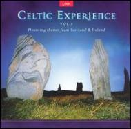 Celtic Experience Vol.2
