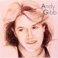 アンディ ギブ ベスト ヒッツ Andy Gibb