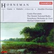 ホルネマン:劇付随音楽「グッレ」、英雄の生涯、アラジン序曲 ショーンヴァント