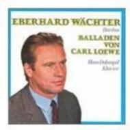 Ballades: Wachter(Br)