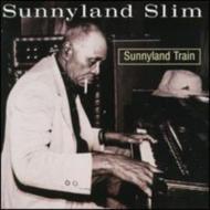 Sunnyland Train