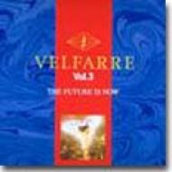 Various - Velfarre Vol. 4 - Evolution Of Dance