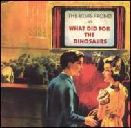 What Did For Dinosaurs