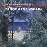 Birth & Re Birth Of Swedish Folk Jazz