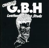 Leather Bristles Studs & Acne